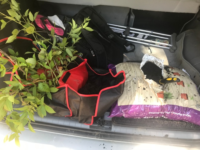 Shoe Organizer Becomes Gardening Equipment the Famr at Homestead Cove